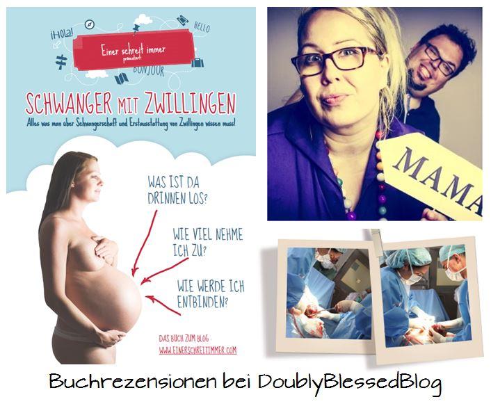 doublyblessedblog_buchrezension_schwangermitzwillingen